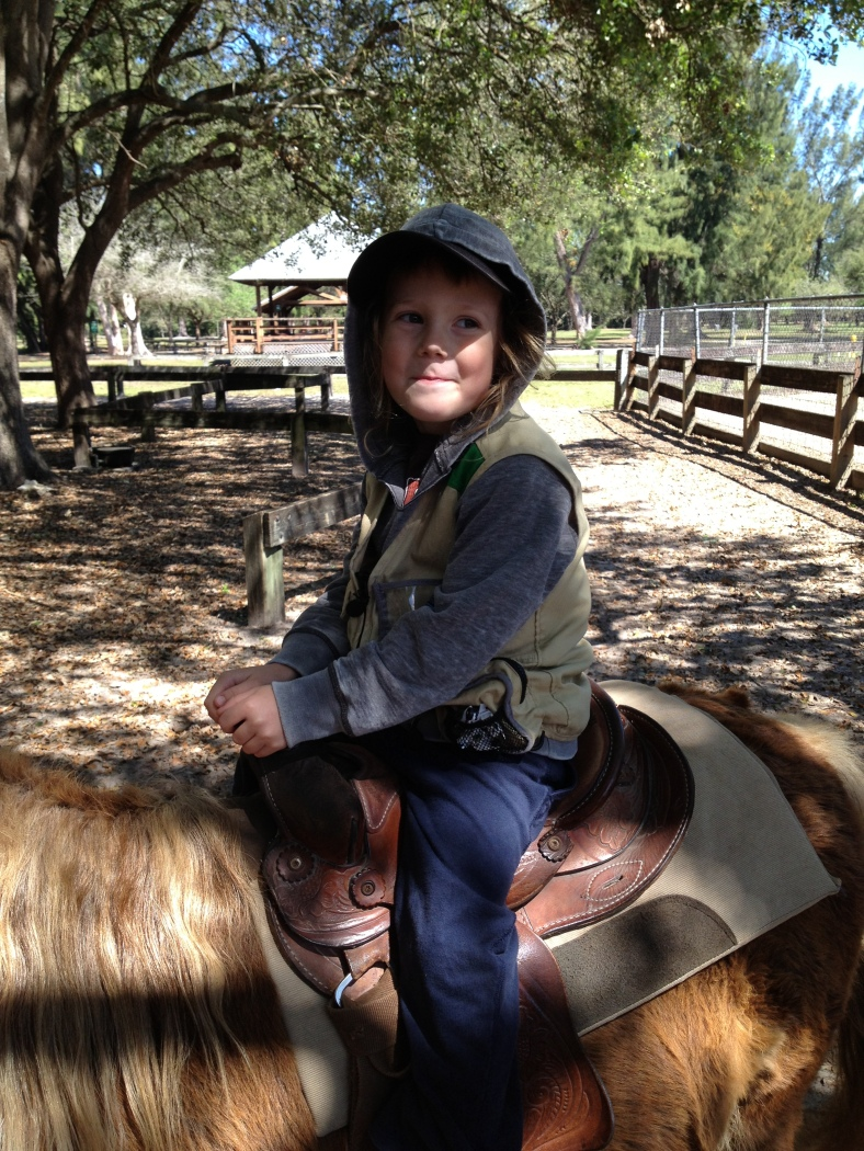 Ben on what I thought was his first pony ride. My dad informed me that he had a previous pony ride on a zoo trip they took last summer. So this was more of a big moment for me than for Ben!