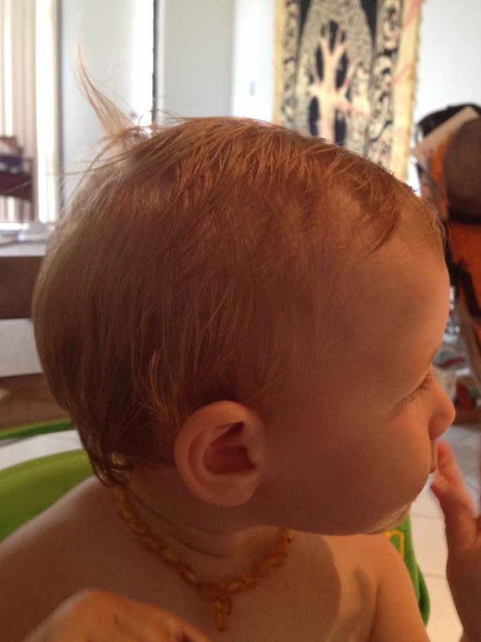 A much cuter side effect of  the shower: it's Elfalfa!