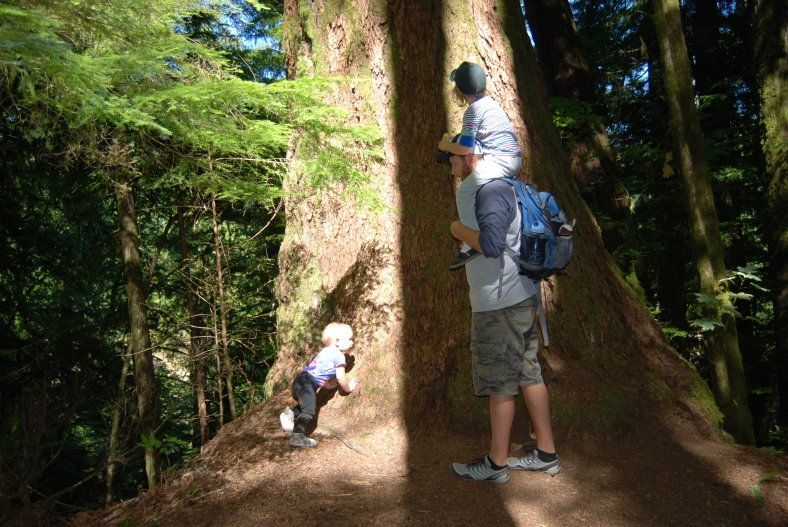 Treehuggers.