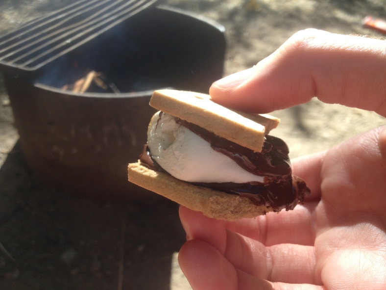 Gluten free, Kosher, vegan s'mores- don't let all those qualifying characteristics fool you, they were decadent and delicious!