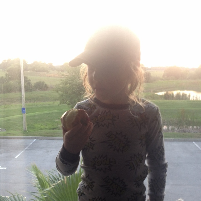 Sweet boy eating an apple in front of our hotel window. It was a lovely view of cattle pasture, and apparently....